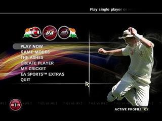 IPL Cricket Setting