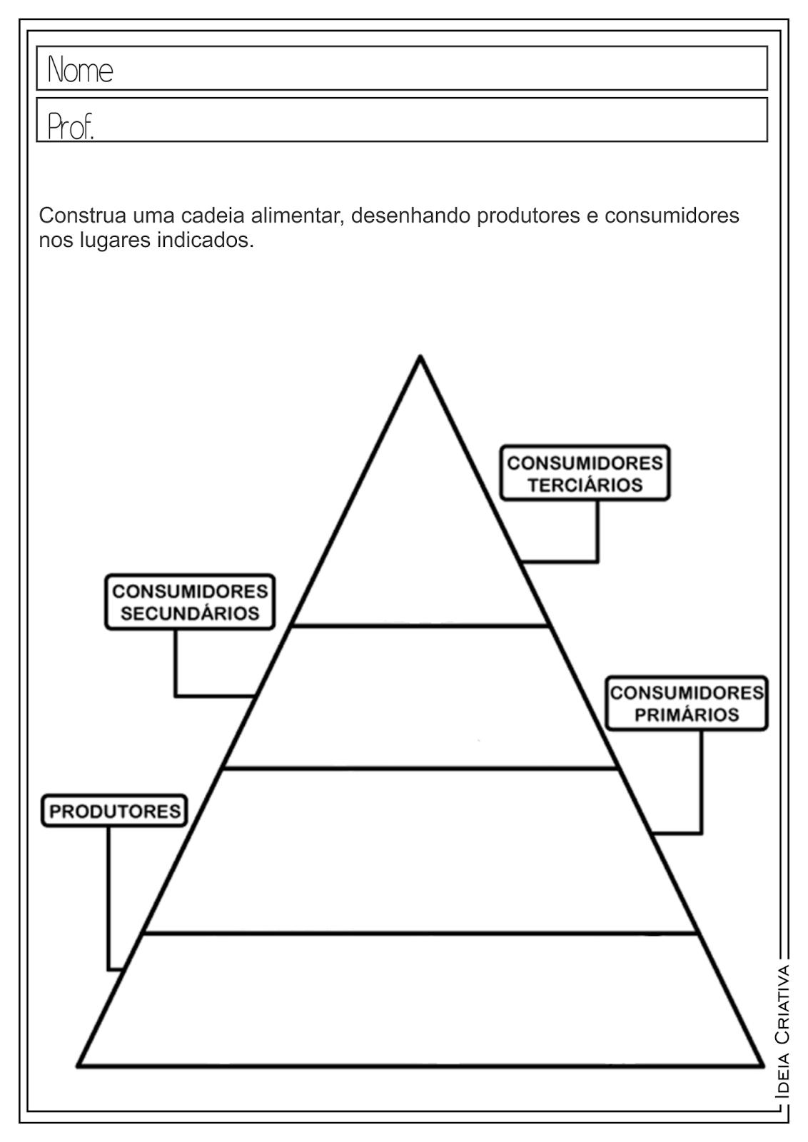 Atividades Educativas Ciências Cadeia Alimentar para Ensino Fundamental