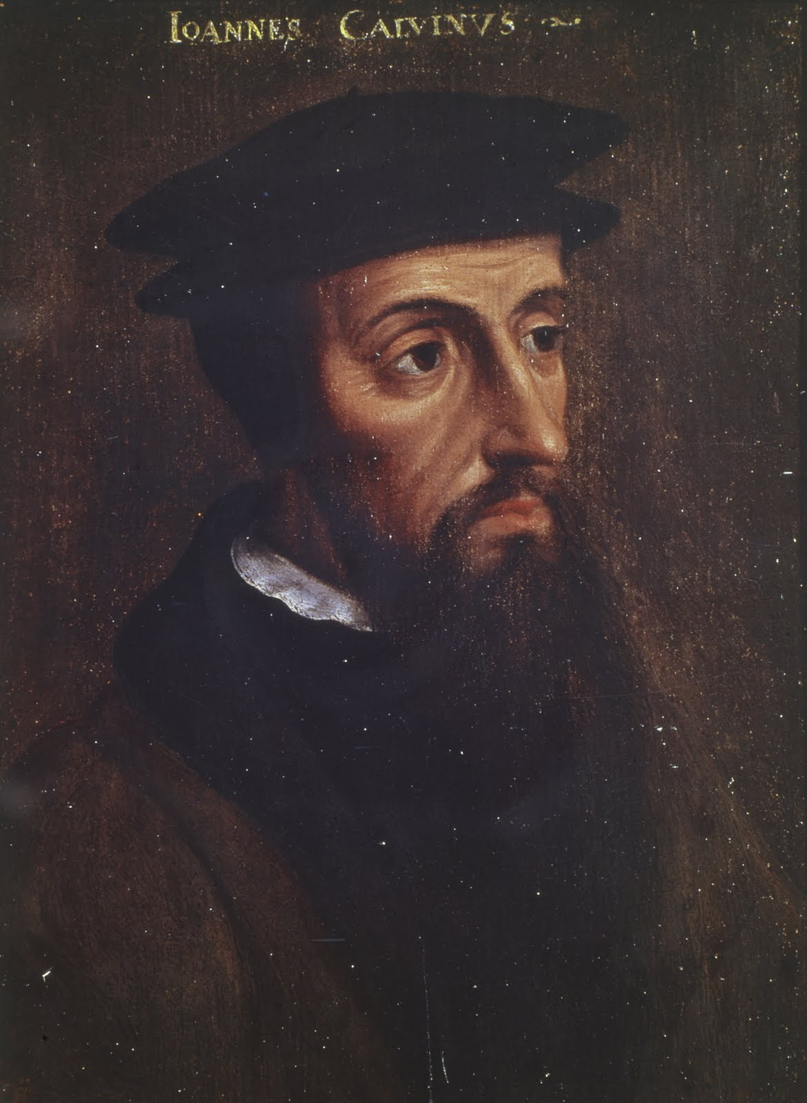 martin luther john calvin biography John calvin: john calvin he also continued his commentaries on scripture, working through the whole new testament except the revelation to john and most of the old testament unlike martin luther, calvin was a reticent man.