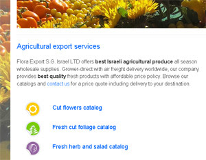 Flora Export S.G. Israel LTD new website preview