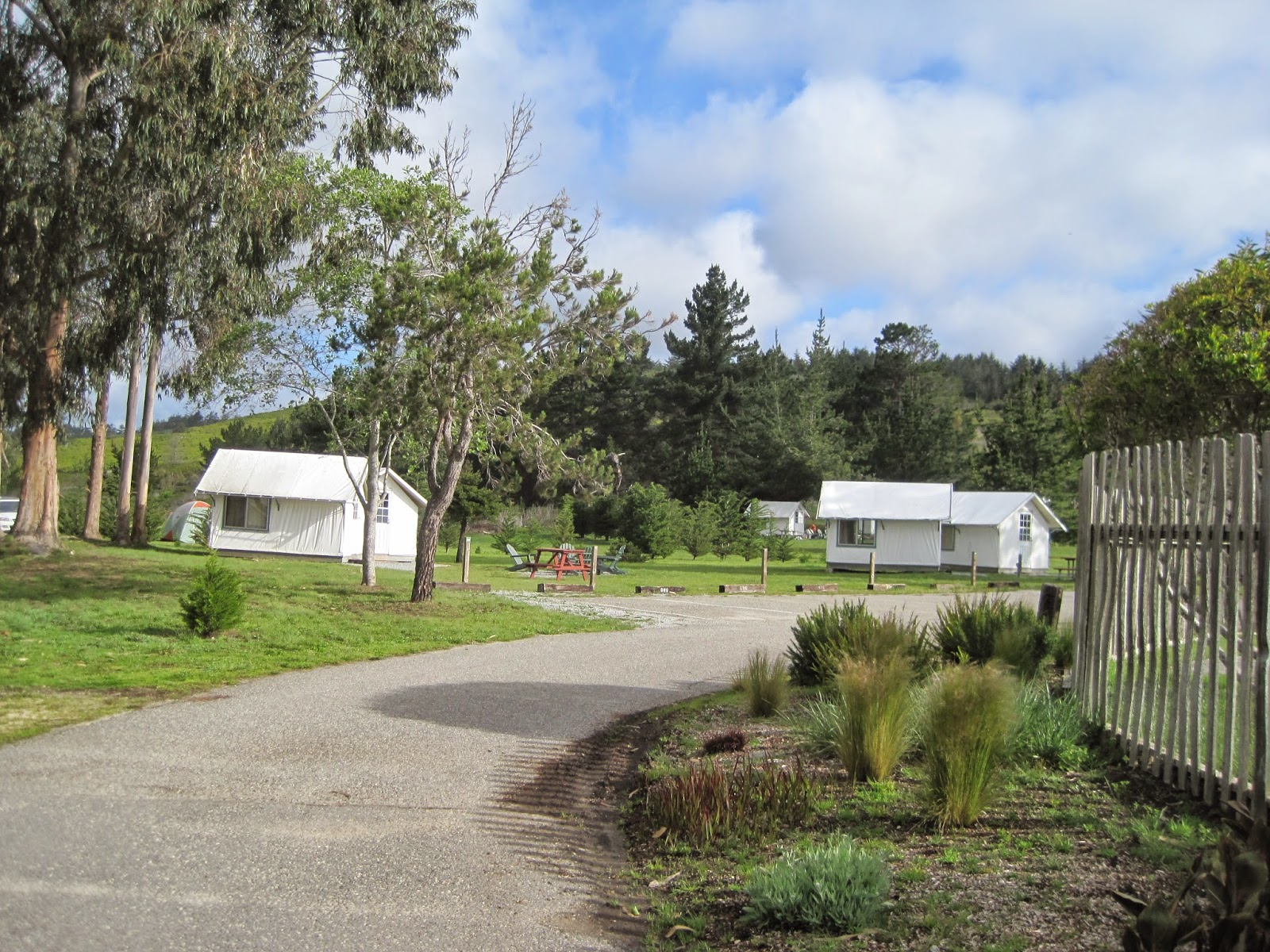 This is the road into the tent bungalows. & My Travels: Costanoa KOA Campground