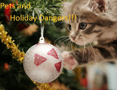Beware of Holidays Items that are Danger for Pets