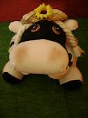 Nuevo Sal Vaca de Rancho