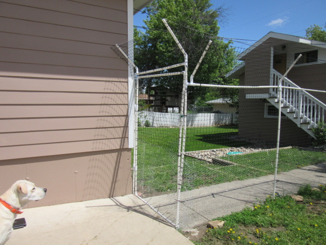 on the other side where there was no fence i put in a pvc pipe gate to access the rest of the backyard and garage