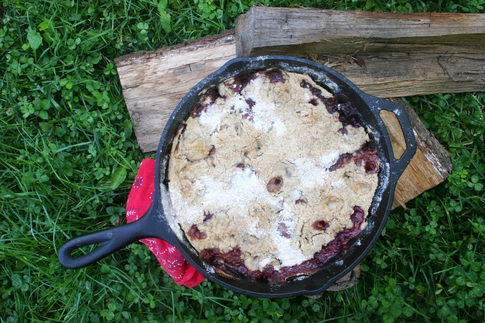 Campfire Skillet Crisp with Strawberries and Bananas
