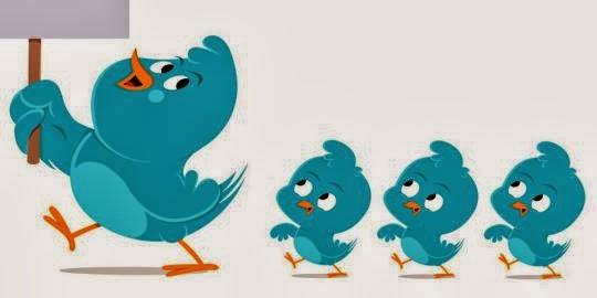 Bird Follow Twitter