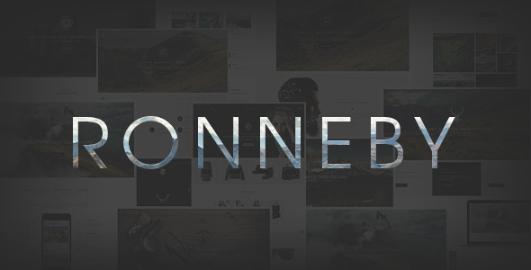 download Ronneby - High-Performance WordPress Theme