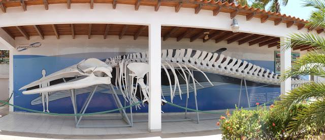 www.viajesyturismo.com.co 1024 x 441