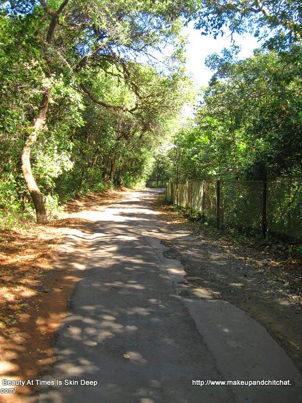 Mahabeleshwar Maharasthra