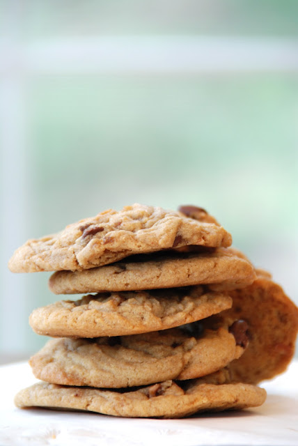 Chunky Peanut, Chocolate and Cinnamon Cookies
