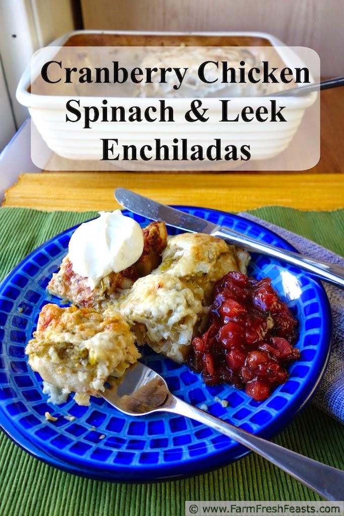 http://www.farmfreshfeasts.com/2014/10/cranberry-chicken-spinach-and-leek.html
