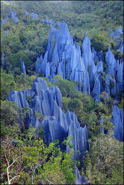 Mulu National Park in Malaysia Region