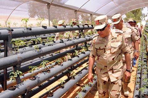 عاجل الحكومة المصرية تعلن عن اخبار مفرحة جدا لكل المصريين بدءًا من الغد