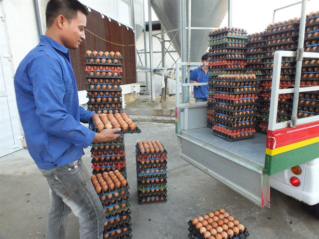 Theo Bộ trưởng Cao Đức Phát, không thể có kiểu cán bộ thú y mở xe trứng ra, ngó ngó rồi thu tiền phí!