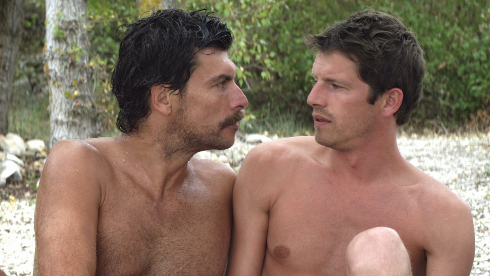 frantsuzskie-gey-filmi