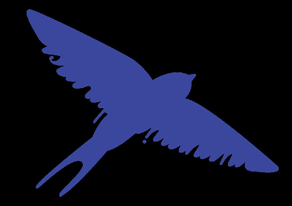 Sigues més aviat com l'ocell...