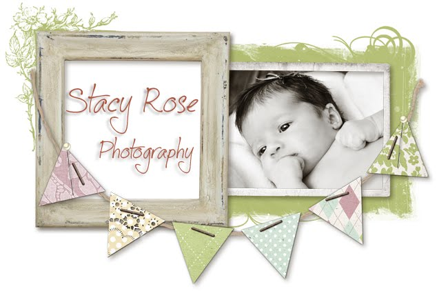 Stacy Rose Photography