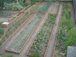 A nosa horta