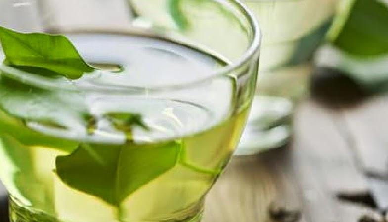 Manfaat Minum Teh Hijau Pada Pagi Hari
