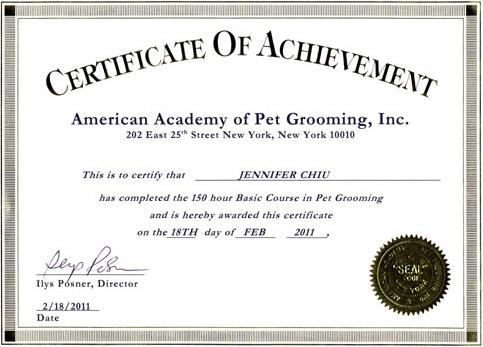 Best puppies training best dog training books cds and dvds best puppies training best dog training books cds and dvds avilable yadclub Image collections