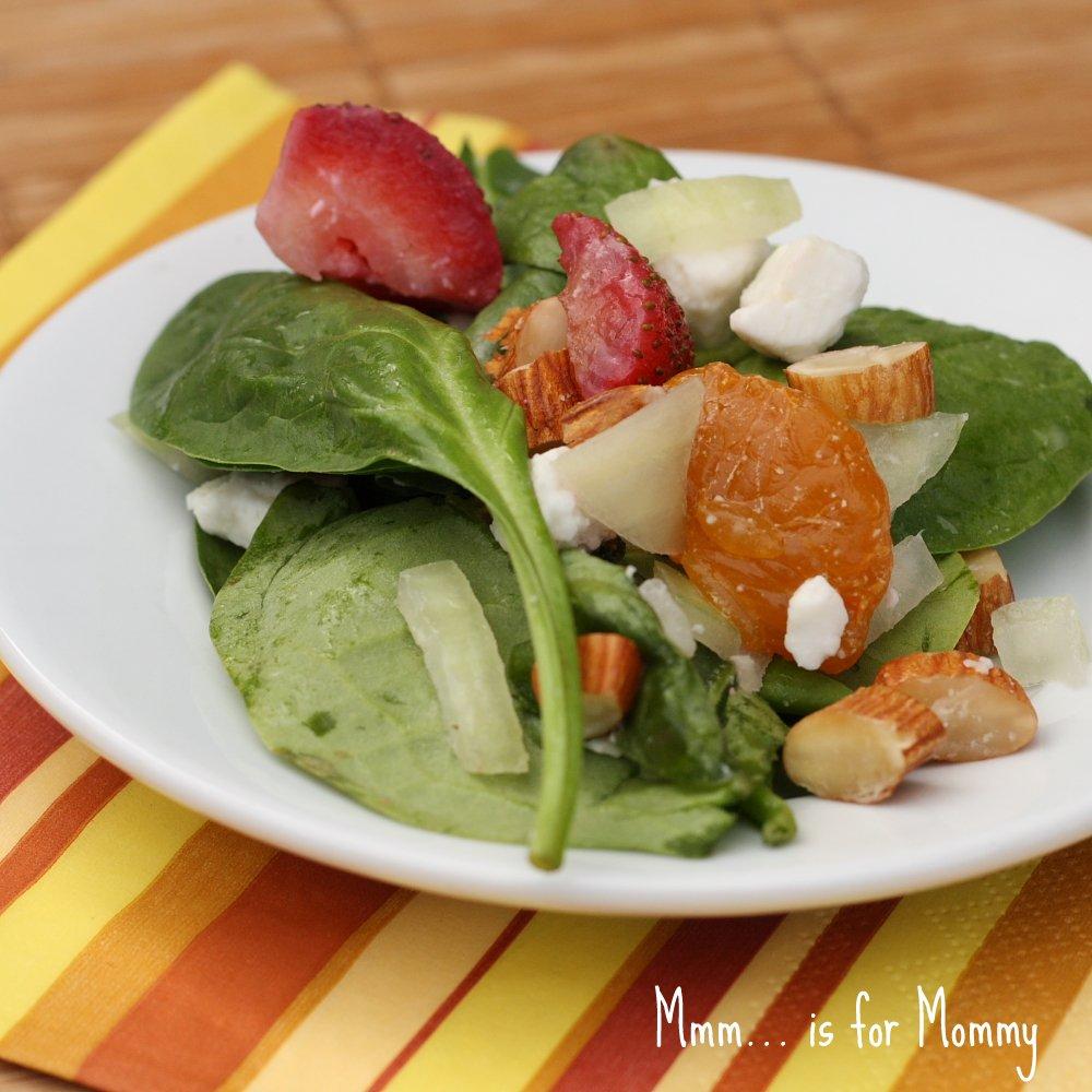 Italian Sunday Gravy America S Test Kitchen