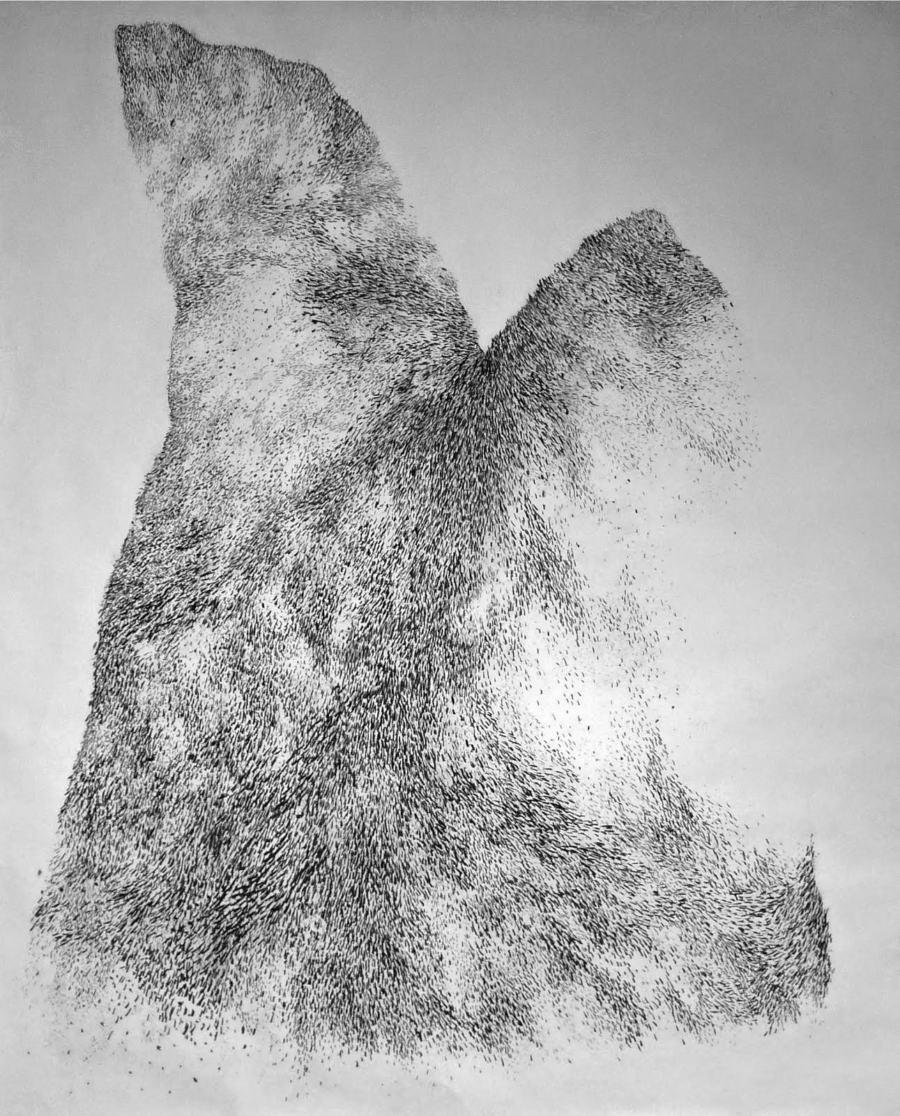 Fusain / papier 170x150 2014