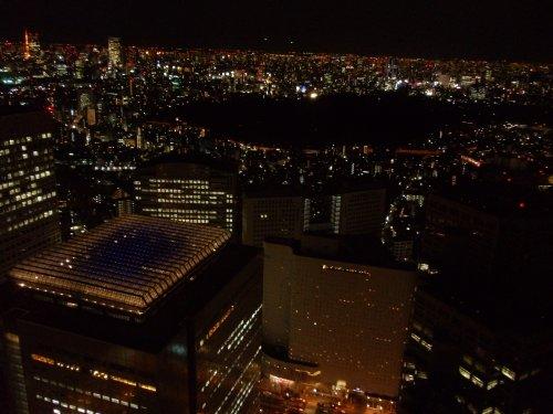 Tokyo, Japan night view