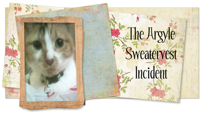The Argyle Sweatervest Incident