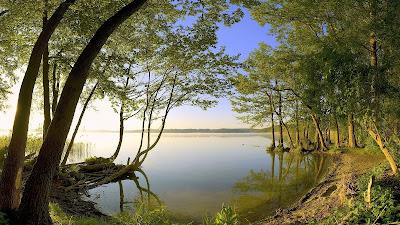 HD_Nature_Wallpaper_beauty_of_green