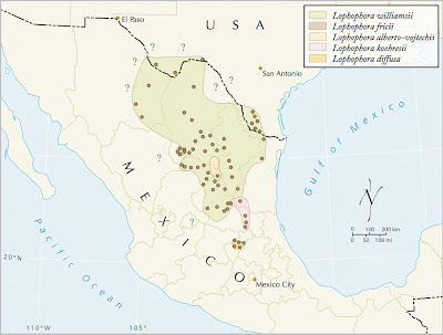 Distribution map for the genus Lophophora