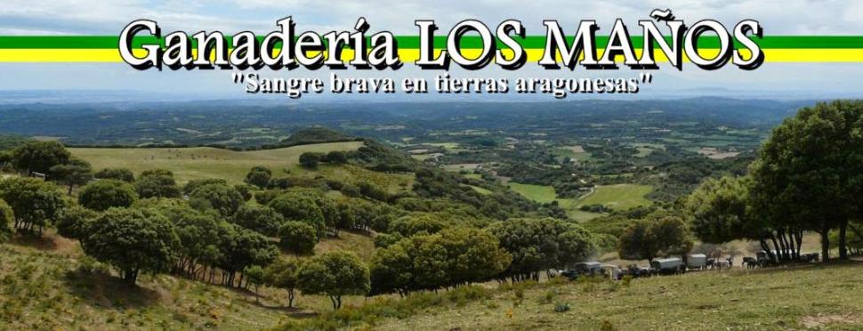 http://vistahermosatoros.blogspot.com.es/