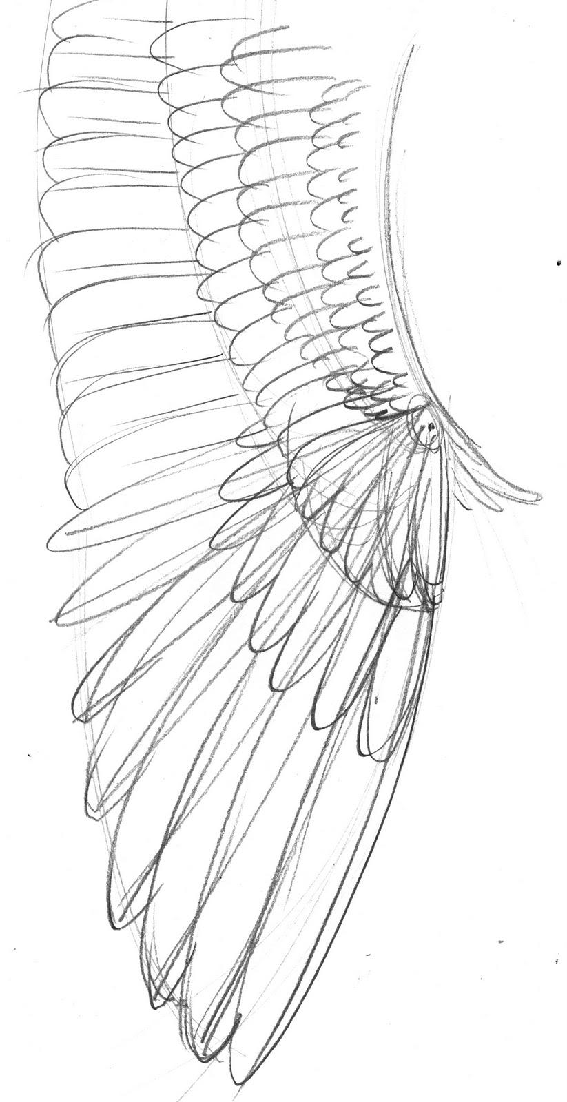 Fun With An Angel   Illustrations By Brett Breckon