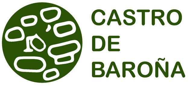 Proxecto de acondicionamento e consolidación para a posta en valor do Castro de Baroña