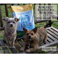 Keepiing your Pet Allergy-Free with Natural Balance L.I.D. Limited Ingredient Diets