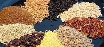perdre-poids-efficacement-riz