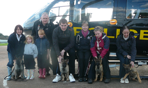 Puppies and their puppy walkers grouped in front of the grounded police helicopter on a drizzly day
