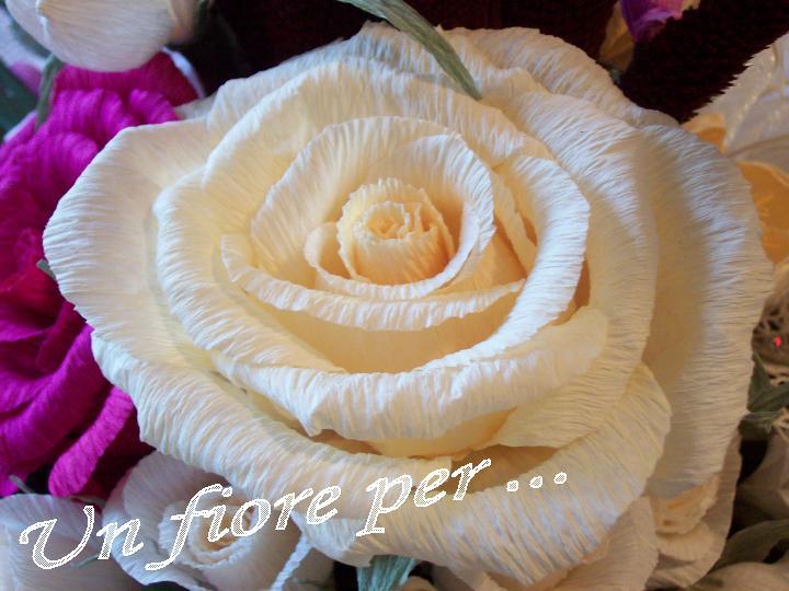 Un fiore per ...