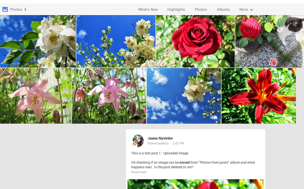 How to delete scrapbook photos google+ - If You Move An Image Reshared From An Album On Google The Actual Post Will Not Show Up Like It Does With An Uploaded Photo But When You Click Open The
