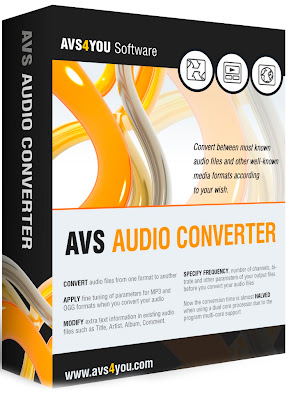 AVS Audio Converter Box
