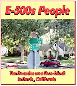 E-500s History