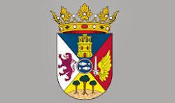 Web Ayuntamiento de Villena