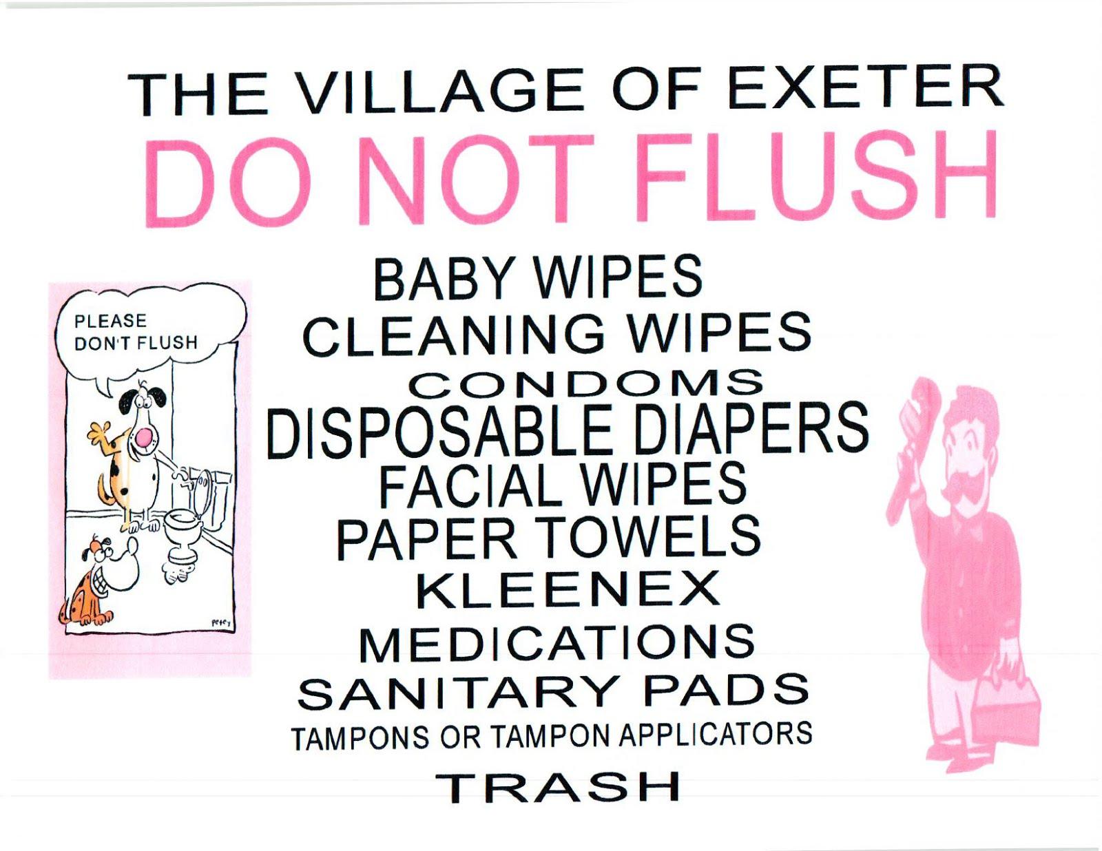 NO FLUSH