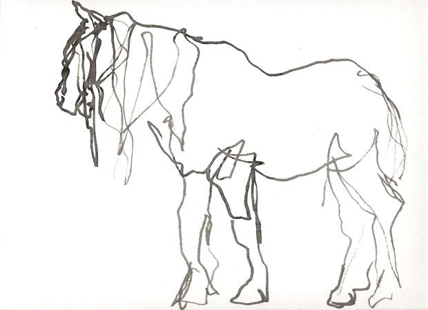 Paarden Kleurplaten Die Je Kan Printen Idee 235 N Over