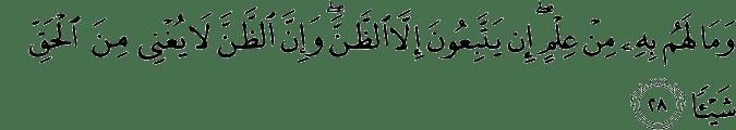Surat An-Najm Ayat 28