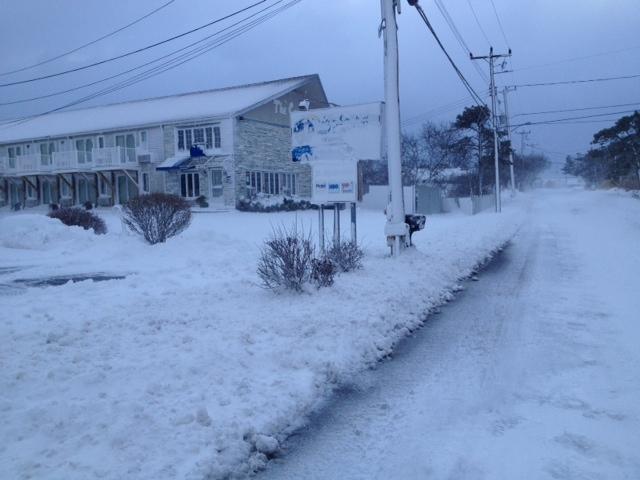cape cod blizzard