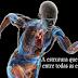 Fáscias, Pontos Gatilhos e Fisioterapia