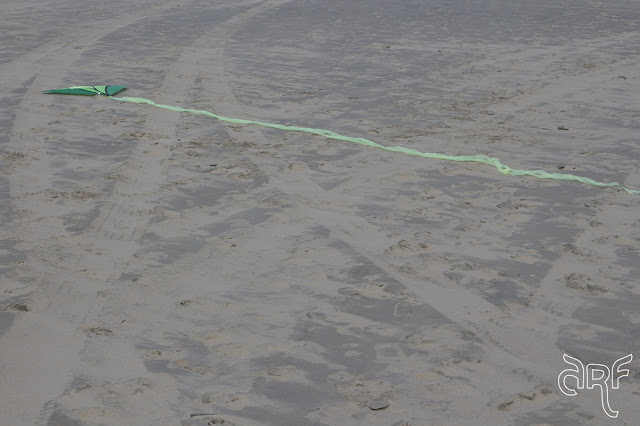green kite in sand