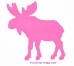 PinkMoosePhotography