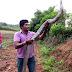 கர்நாடக மாநிலம் ஷிமோகா அருகே பிடிபட்ட சுமார் 14 அடி நீளம் உள்ள ராஜநாகம் (புகைப்படங்கள்)
