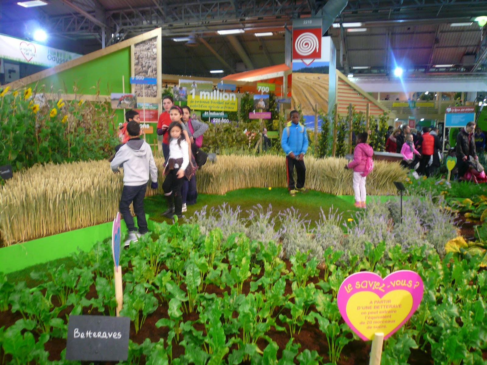 Positive eating positive living quelques instants du for Agriculture salon